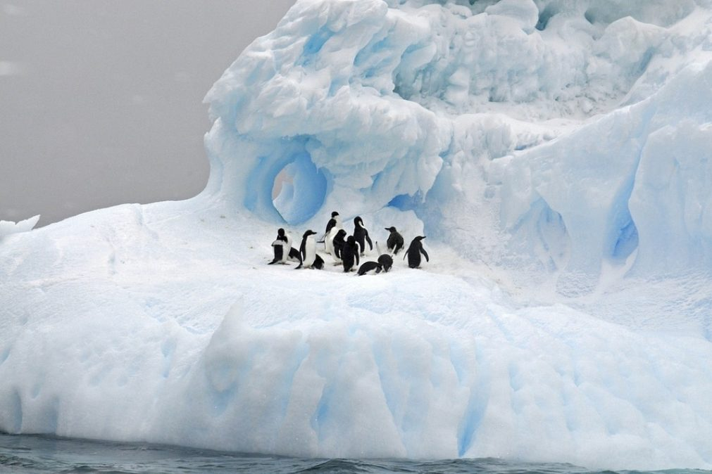 Acelera o degelo da Antártida