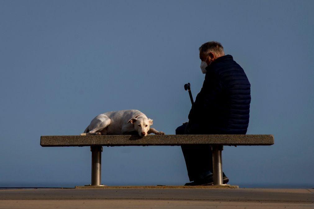 Regime geral do bem-estar animal até ao fim do ano, diz ministro do Ambiente