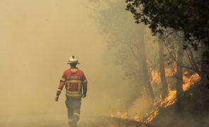 Incêndios: Fogo na Sertã mobiliza 100 bombeiros e nove meios aéreos
