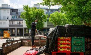 Portugal vai realizar inquérito nacional sobre desperdício alimentar