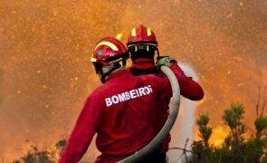 Incêndio em silos de cereais em Beja é combatido por 34 bombeiros