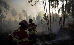 Dados provisórios revelam que área ardida mais que duplicou em duas semanas