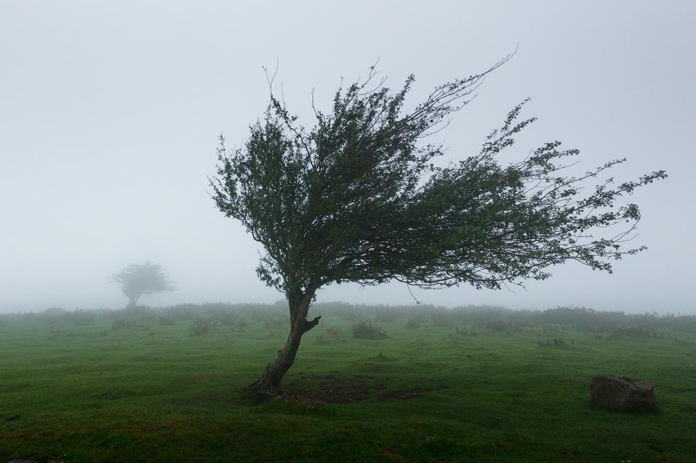 Meteorologia: Previsão do tempo para terça-feira, 21 de setembro