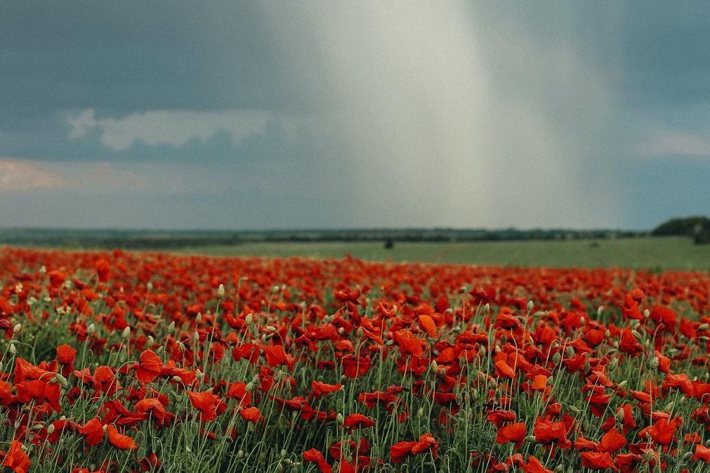 Meteorologia: Previsão do tempo para quarta-feira, 22 de setembro