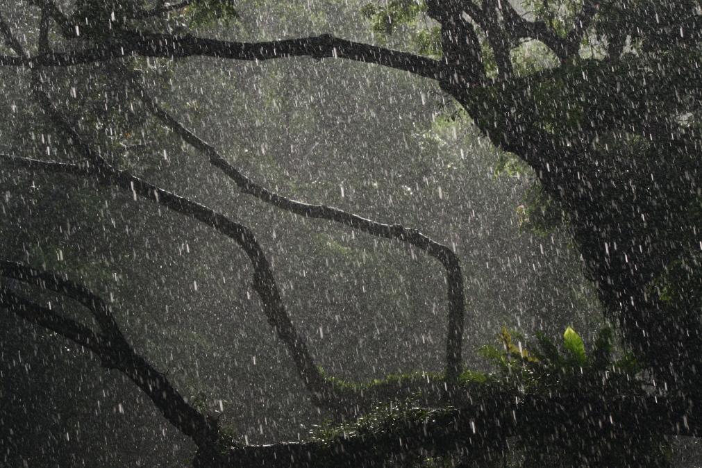 Meteorologia: Previsão do tempo para quinta-feira, 23 de setembro