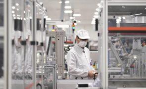 Banco de Portugal melhora perspetiva sobre mercado de trabalho